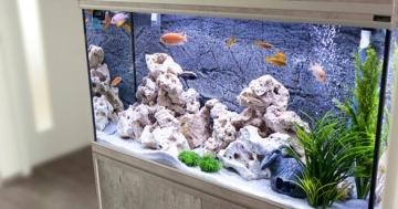 aquarium safe epoxy