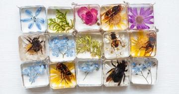 preserving flowers in resin